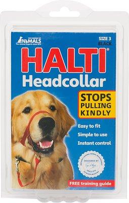 Halti Dog Headcollar, Black, Size 3