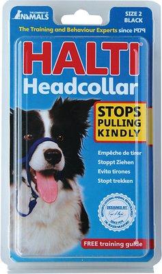 Halti Dog Headcollar, Black, Size 2