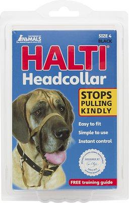Halti Dog Headcollar, Black, Size 4