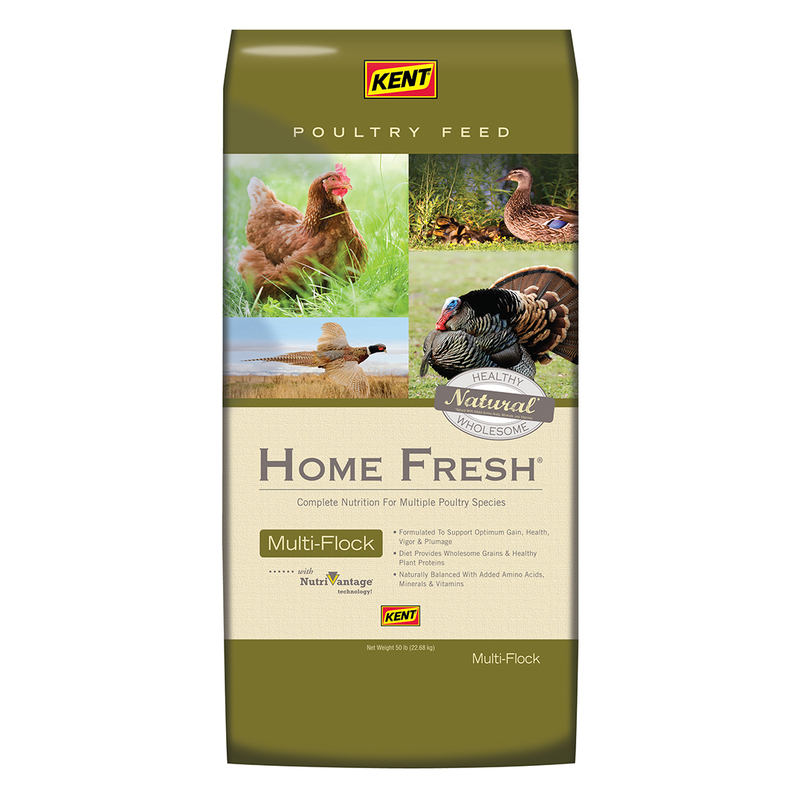 Kent Home Fresh Multi-Flock Breeder Poultry Food, 50-lb