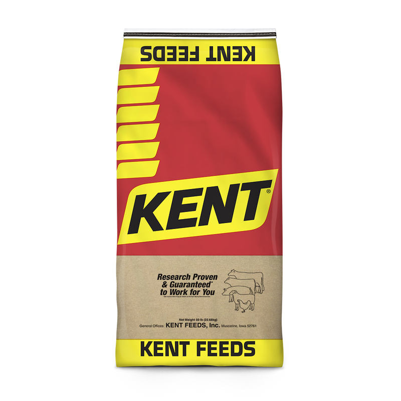 Kent Three Grains Scratch Poultry Feed, 50-lb