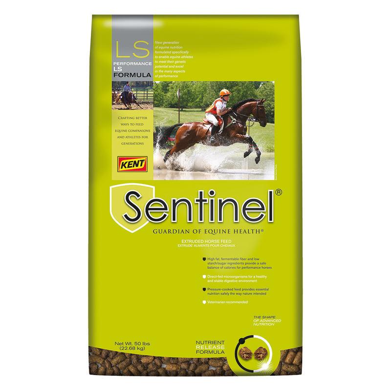 Kent Sentinel Performance LS Formula Horse Feed, 50-lb