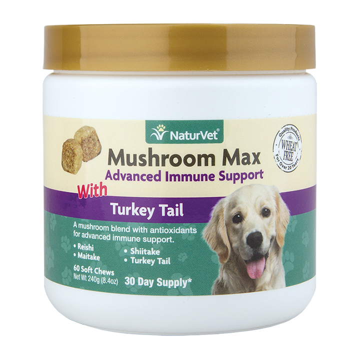 NaturVet Mushroom Max Advanced Immune System Dog & Cat Soft Chews w/ Turkey Tail Image