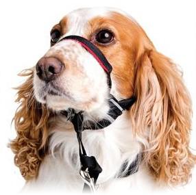 Halti OptiFit Dog HeadCollar, Large