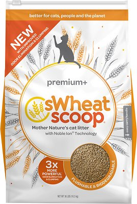 sWheat Scoop Premium+ Natural Clumping Wheat Cat Litter, 36-lb