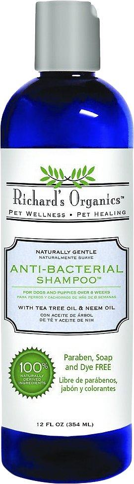 Richard's Organics Anti-Bacterial Shampoo, 12-oz bottle