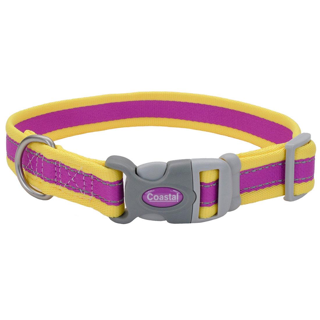 Coastal Pro Reflective Adjustable Dog Collar, Purple/Yellow, 1-in x 20-in