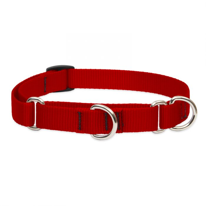 Lupine Pet Basic Solids Martingale Training Dog Collar, Red, 3/4-in x 10-14-in