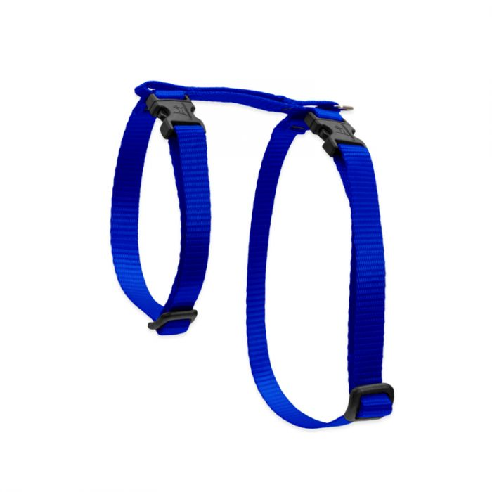 Lupine Pet Basic Solids H-Style Cat Harness, Blue, 1/2-in x12-20-in