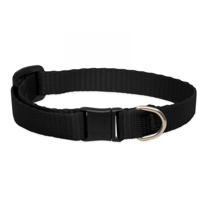 Lupine Pet Basic Solids Safety without Bell Cat Collar, Black, 8-12-in