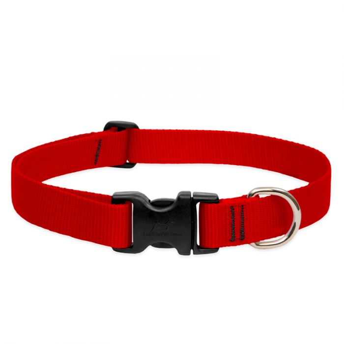 Lupine Pet Basic Solids Adjustable Dog Collar, Red, 1-in x 16-28-in