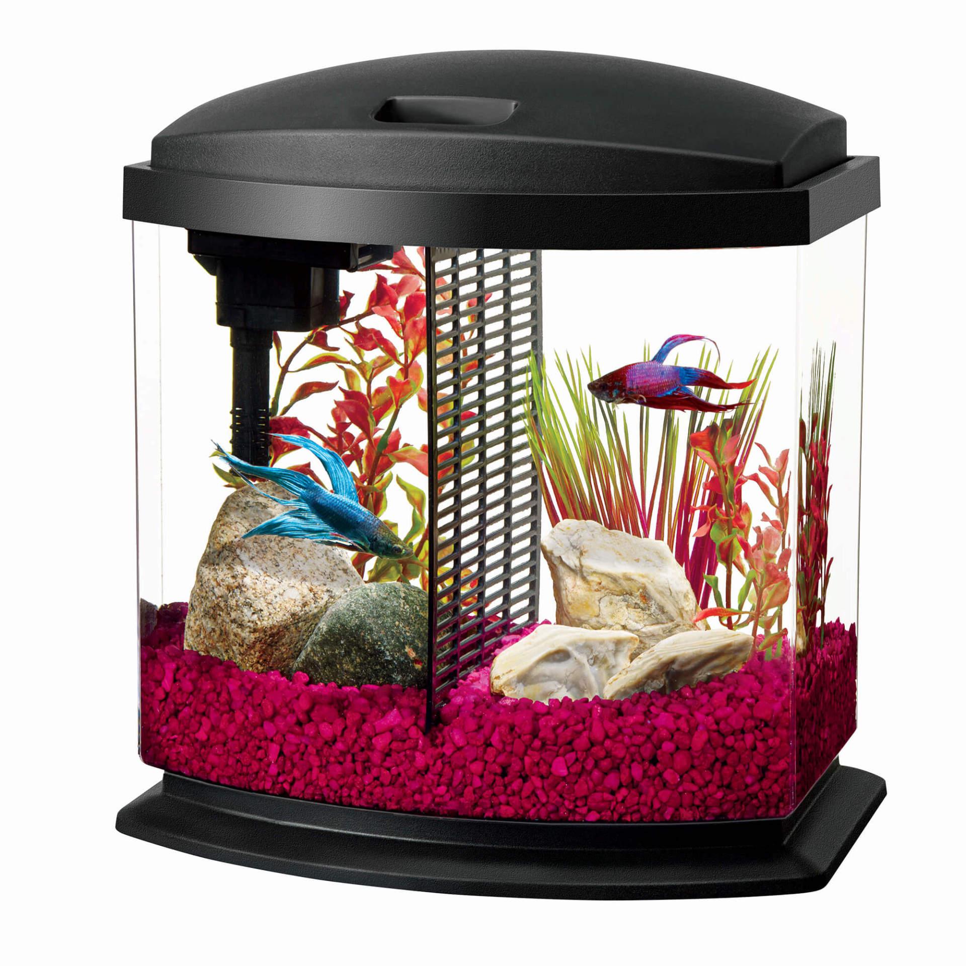 Aqueon BettaBow 2.5 Desktop Aquarium Kit