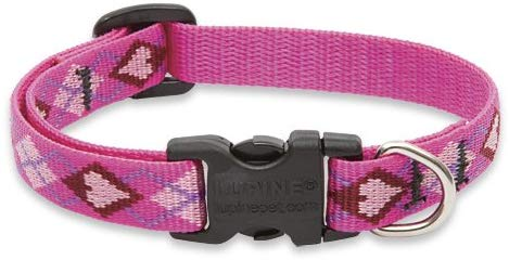 Lupine Pet Original Designs Adjustable Dog Collar, Puppy Love Image