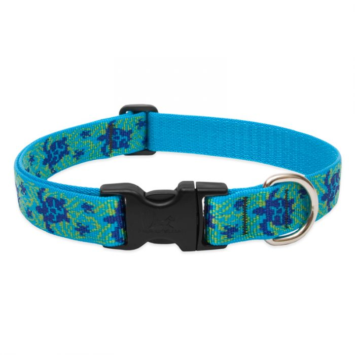 Lupine Pet Original Designs Adjustable Dog Collar, Turtle Reef, 1-in x 12-20-in