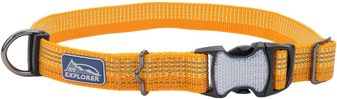 Coastal K9 Explorer Brights Reflective Adjustable Dog Collar, Desert Image