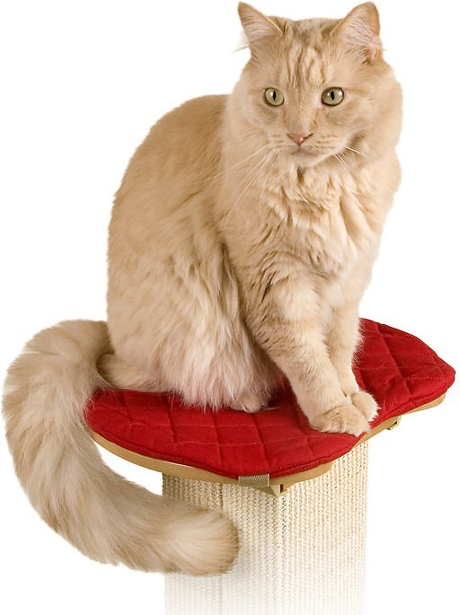 Pioneer Pet SmartCat The Ultimate Post Perch Pad