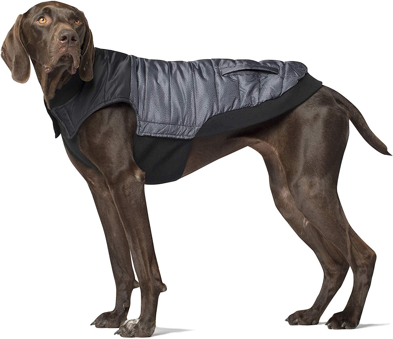 Canada Pooch Summit Stretch Dog Vest, Grey Pepper, 20-in