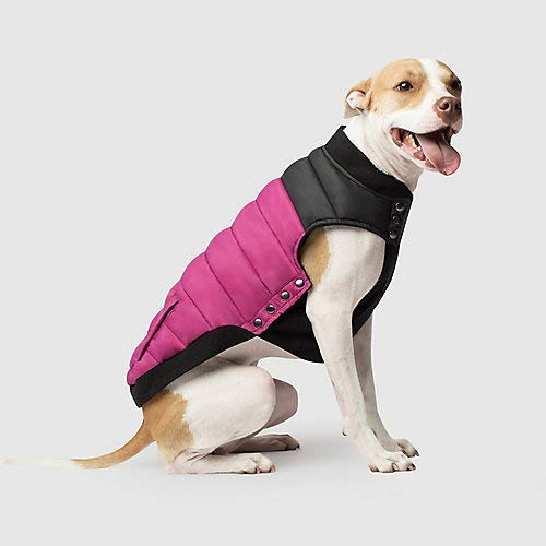Canada Pooch Summit Stretch Dog Vest, Plum, 10-in