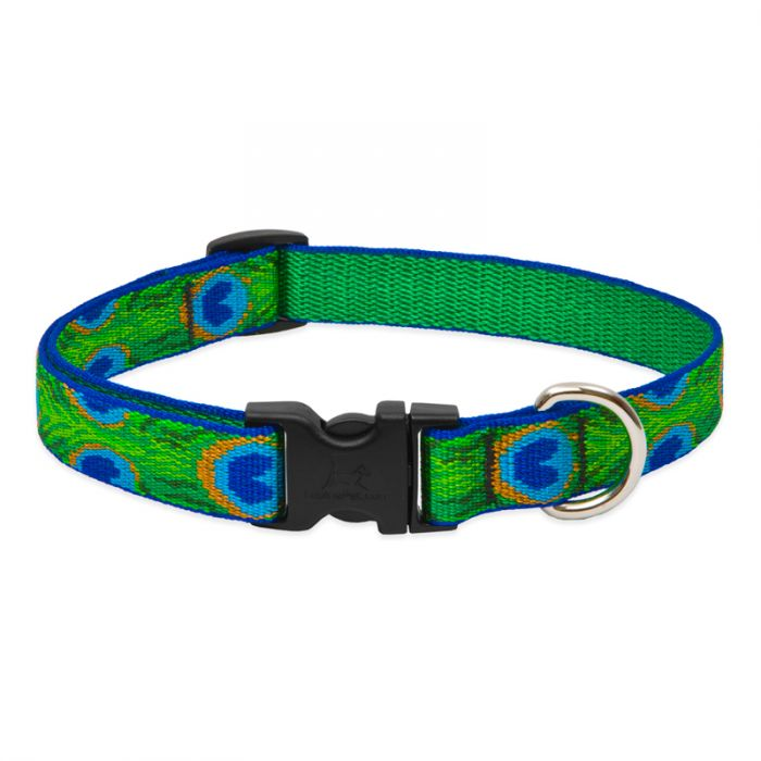 Lupine Pet Original Designs Adjustable Dog Collar, Tail Feathers, 3/4-in x 13-22-in