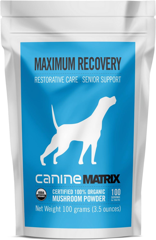 Canine Matrix Maximum Recovery Restorative Care Senior Support Dog Supplement, 100-g