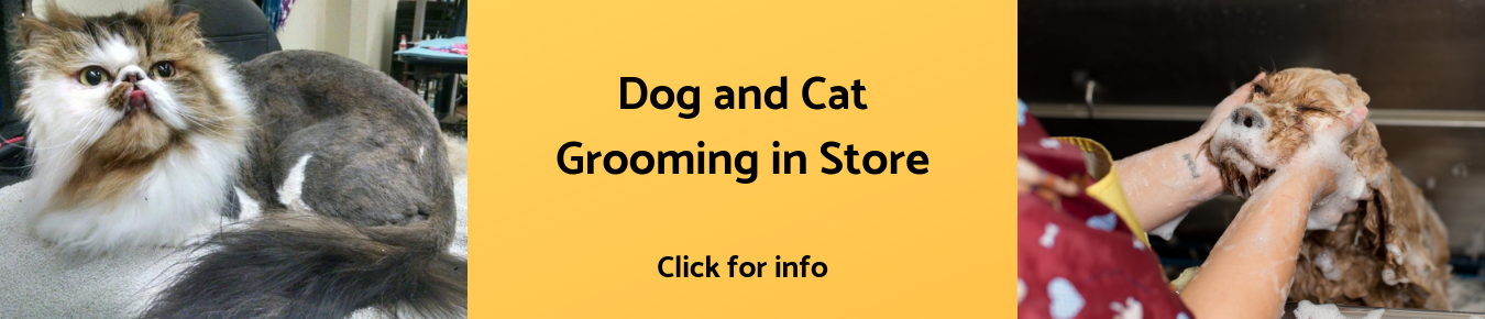 Dog and Cat Grooming